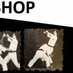 9THROWS-WORKSHOP_banner